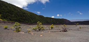Kilauea Iki crater trail Stock Images