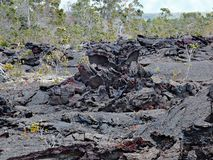 Kilauea volcano,lava flow of 1974 on Big Island, Hawaii Stock Images