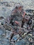 Kilauea火山,熔岩流1974年在大海岛,夏威夷 免版税库存图片