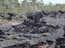 Kilauea火山,熔岩流1974年在大海岛,夏威夷 库存图片