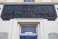 Kilburn Zwierzęcy Wojenny pomnik w Londyn Fotografia Royalty Free