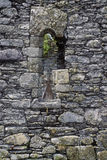 Kilcatherine教会,黄柏,爱尔兰窗口  库存图片