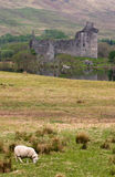 Kilchurn Castle Stock Images