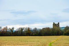 KILCREA, ИРЛАНДИЯ - 28-ОЕ НОЯБРЯ: Замок Kilcrea 28-ого ноября 2012 в Co.Cork, Ирландии Стоковые Фото