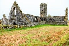 KILCREA, ИРЛАНДИЯ - 28-ОЕ НОЯБРЯ: Friary Kilcrea 28-ого ноября 2012 в Co.Cork, Ирландии Стоковая Фотография