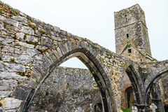Kilcrea Friary in Co.Cork, Ireland Stock Image