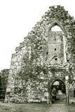 KILCREA, IRLANDA - 28 DE NOVEMBRO: Mosteiro de Kilcrea o 28 de novembro de 2012 em Co.Cork, Irlanda Fotos de Stock