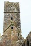 KILCREA, IRLANDA - 28 DE NOVEMBRO: Mosteiro de Kilcrea o 28 de novembro de 2012 no Co Cortiça, Ireland Fotos de Stock Royalty Free