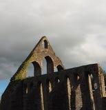 Kilcrea munkkloster Nenagh Irland Arkivbild