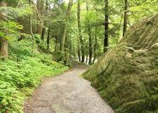 Kildo ślad Portersville, Pennsylwania - McConnells młynu stanu park - obrazy royalty free