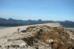 Kilimajaro峰顶,非洲 库存图片