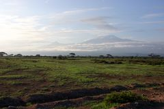 kilimandżaro Fotografia Stock