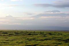 kilimandżaro Zdjęcia Stock
