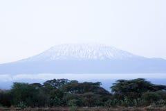 kilimangiaro εικόνας Στοκ Εικόνα