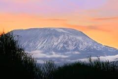 kilimanjaro挂接日出 库存图片