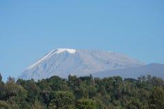 kilimanjaro Στοκ Φωτογραφία