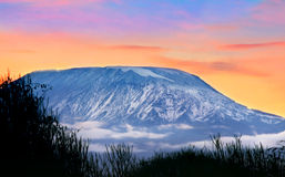 Kilimanjaro Stock Afbeeldingen