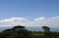 Kilimanjaro Royalty Free Stock Photography