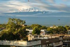kilimanjaro lizenzfreie stockfotos
