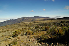 Kilimanjaro: along the Machame route Royalty Free Stock Images
