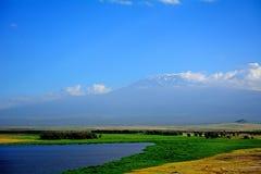 Kilimanjaro, Amboseli National Park, Kenya Stock Image