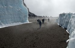 Kilimanjaro climbers in crater. Climbers wander through the remains of the glaciers in the crater of Mt. Kilimanjaro Stock Images