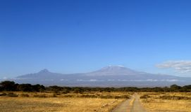 Kilimanjaro de support Image stock