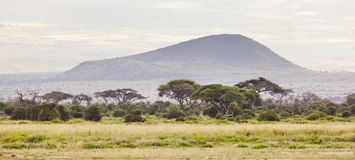 Kilimanjaro Flank Crater Royalty Free Stock Photography