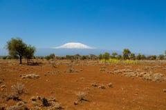 Kilimanjaro góra, rabatowy park narodowy, Afryka, Tanzania i Kenja Amboseli, Zdjęcie Stock