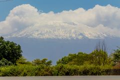 Kilimanjaro högst berg i väg för Afrika siktsfron Arkivfoto