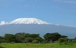 Kilimanjaro in Kenya Royalty Free Stock Photography