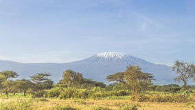 Kilimanjaro in Kenya Royalty Free Stock Image