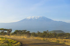 Kilimanjaro in Kenya. Landscape with snow covered peak of Kilimanjaro in Kenya and dirt track royalty free stock images