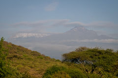 Kilimanjaro - Kibo and Mawenzi peaks, roof af Africa Royalty Free Stock Photography