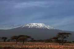 Kilimanjaro - la Tanzania - l'Africa immagine stock libera da diritti