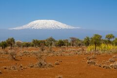 Free Kilimanjaro Mountain In Africa View From Amboseli Royalty Free Stock Photo - 184373145