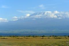 Kilimanjaro mountain Stock Images