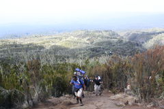 Kilimanjaro Porters Royalty Free Stock Photos
