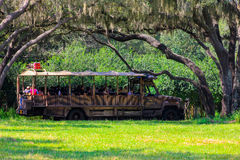 Kilimanjaro Safaris at Animal Kingdom Royalty Free Stock Image