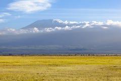 Kilimanjaro with snow cap royalty free stock photos