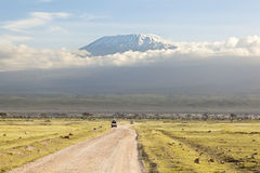 Kilimanjaro with snow cap. Seen from Amboseli National Park in Kenya with a road in the foreground Royalty Free Stock Photo