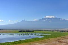 Kilimanjaro Royalty Free Stock Image