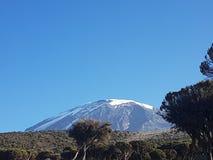Kilimanjaro Tanzania de Mout Imagen de archivo