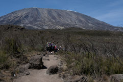 Kilimanjaro trekking on Rongai Route Royalty Free Stock Images