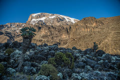 Kilimanjaro view from Machame route. Trail Royalty Free Stock Photos