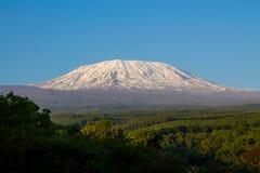 Kilimanjaroberg in Tanzania stock afbeelding