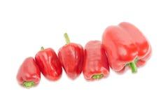 Kilka czerwoni dzwonkowych pieprzy różni rozmiary na lekkim tle Zdjęcia Stock