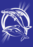 kilka delfinów odcisk Fotografia Royalty Free