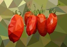 Kilka dojrzali czerwoni pomidory wiesza na gałąź w szklarni fotografia stock