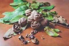 Kilka orzechów włoskich nasiona, kłamstwo na brown tle i Zdjęcie Stock